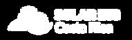 Logo-solaring.png