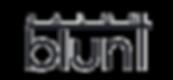 Salon Blunt Logo