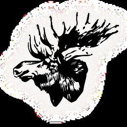 The Loose Moose head Logo.png