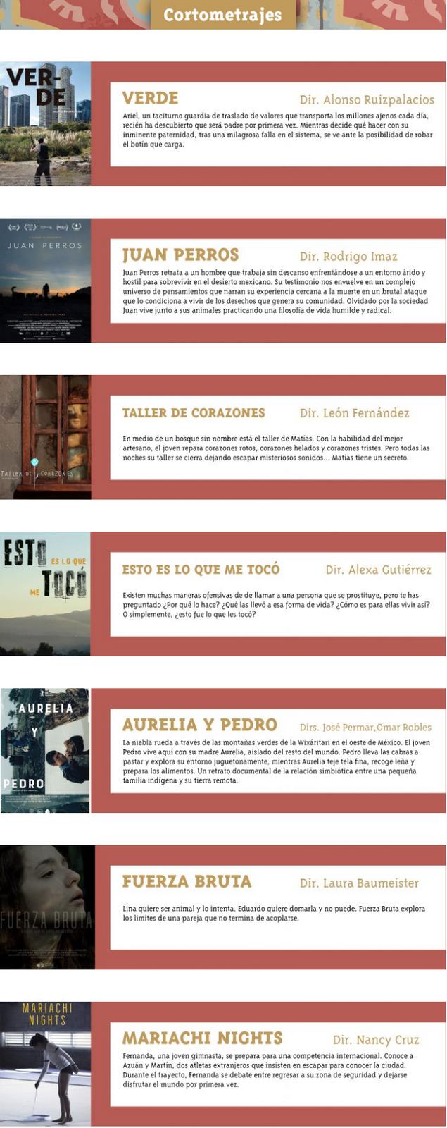 Quédate en casa y disfruta de los cortometrajes que FICM Presenta en línea tiene para ti