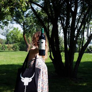 benoit-valerie-calvet-toro-loco-wine-23.jpg