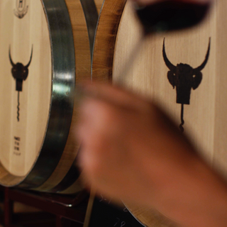 benoit-valerie-calvet-toro-loco-wine-01.png