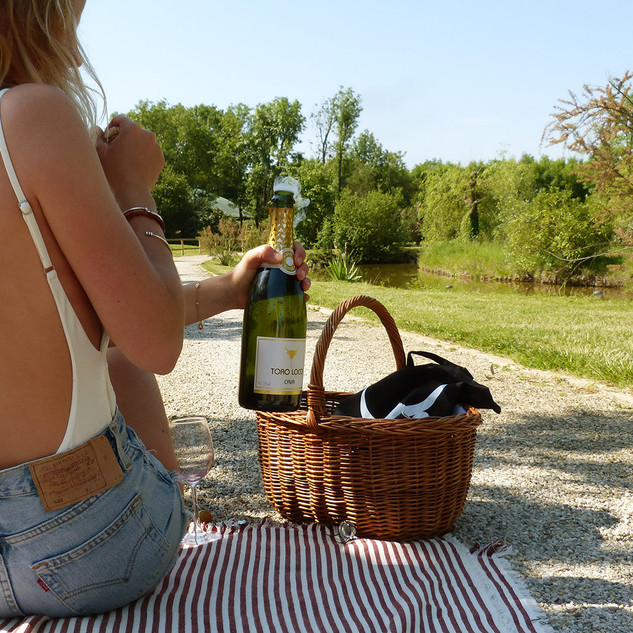 benoit-valerie-calvet-toro-loco-wine-09.jpg