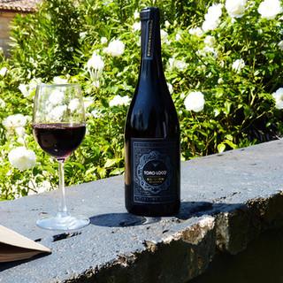 benoit-valerie-calvet-toro-loco-wine-08.jpg