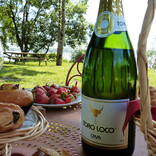 benoit-valerie-calvet-toro-loco-wine-15.jpg