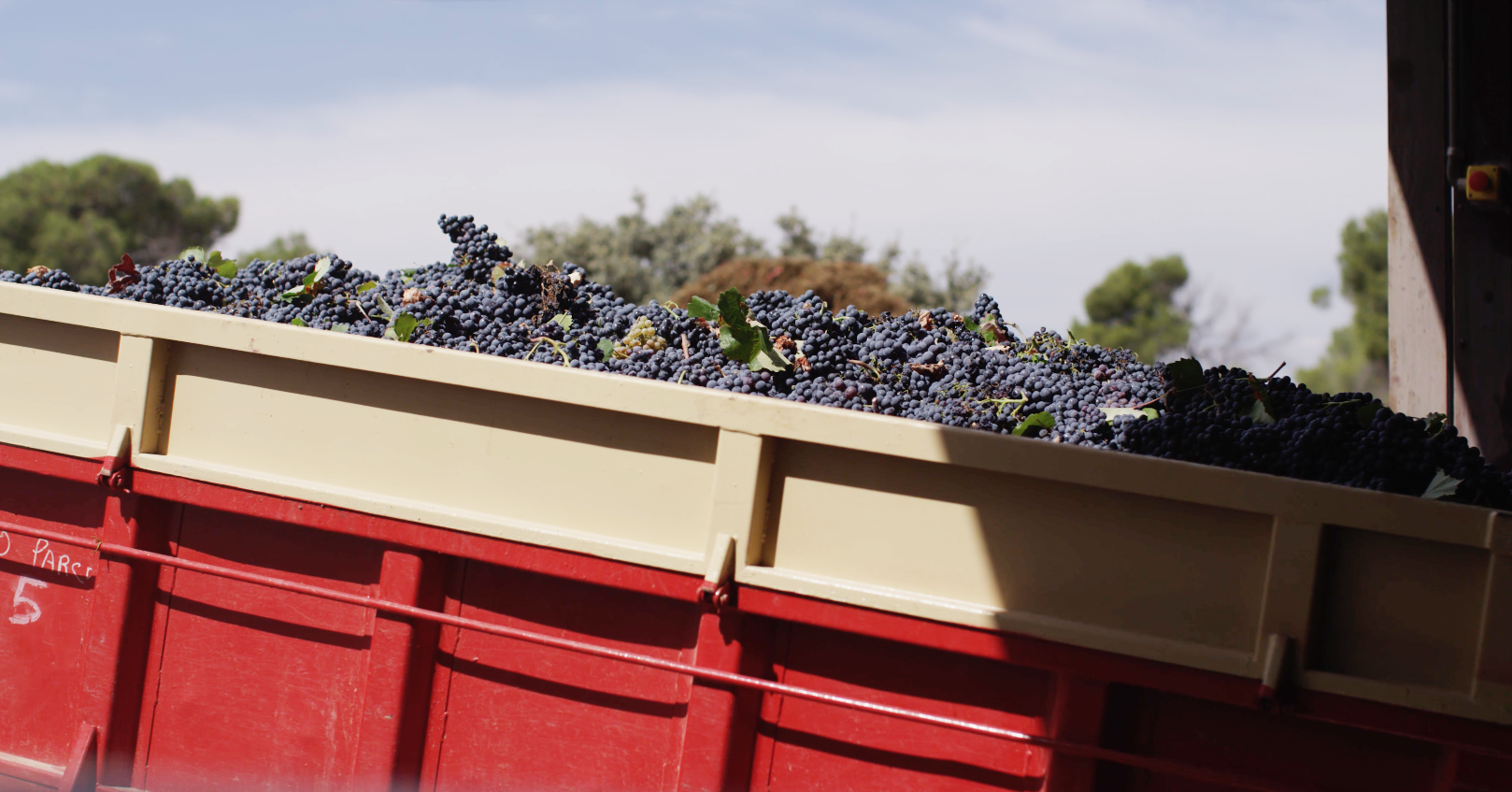 benoit-valerie-calvet-toro-loco-wine-05