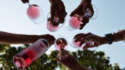 toro-loco-wine-utiel-requena-09