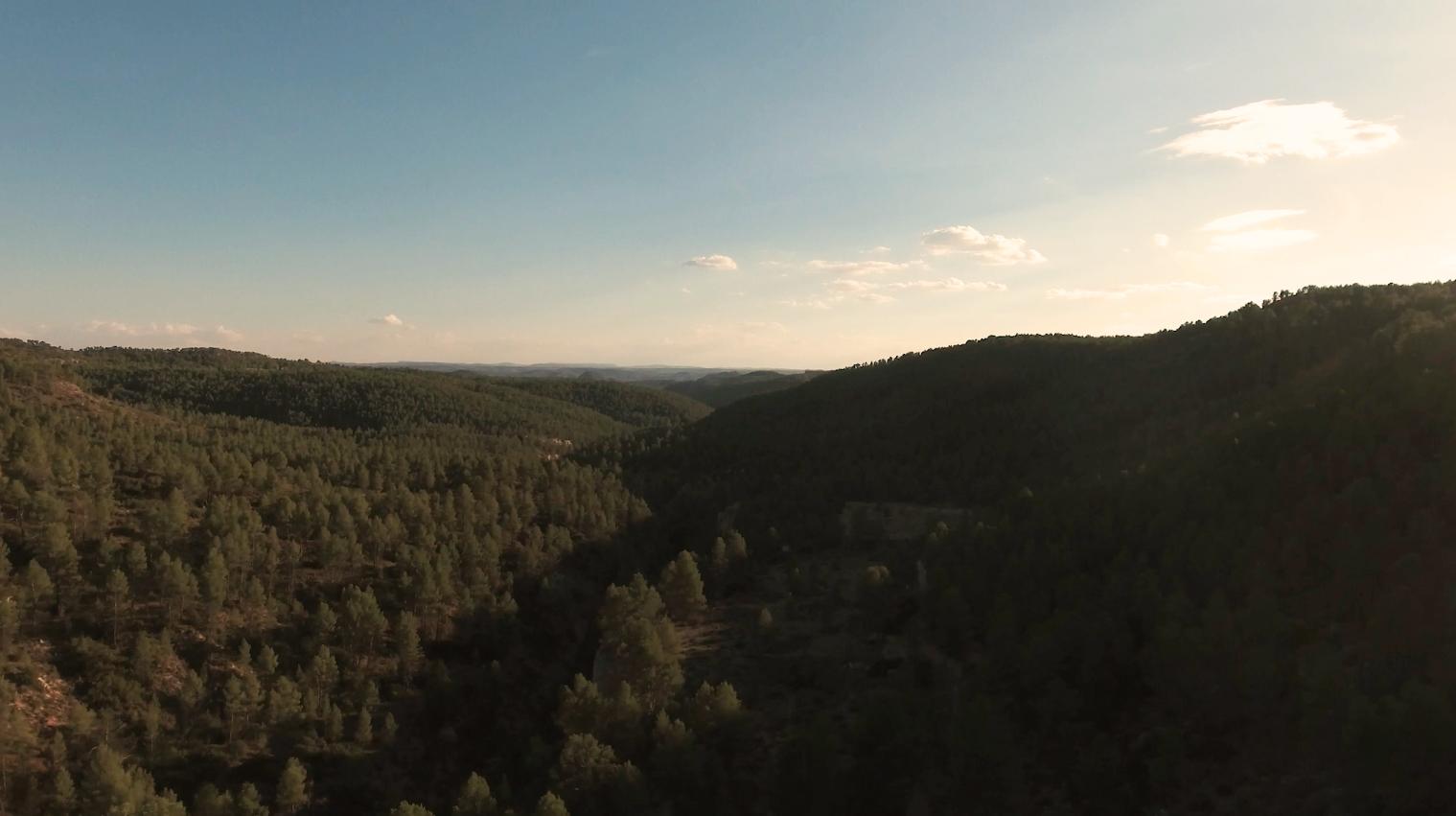 benoit-valerie-calvet-wine-utiel-requena-landscape