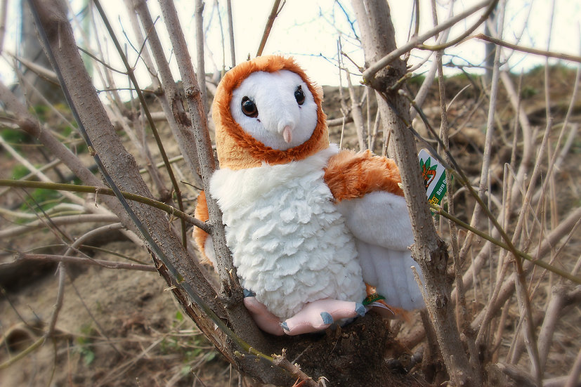 "Barn Owl Plush - 12"" Class"