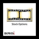 ROWDi Stock Options logo for site.png