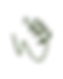 logo Wild Foraged Gin