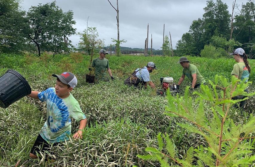 White Oak Bayou Tree Planting June 2020.