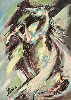 Pegasus 70*50