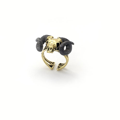Aries Skull Ramble Zodiac ring in Brass