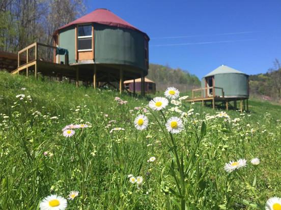 Yurts.jpg