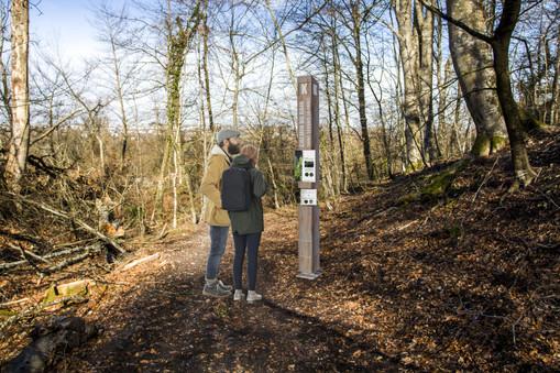 Sentier pédagogique, Saint-Gervais-la-Forêt (41)