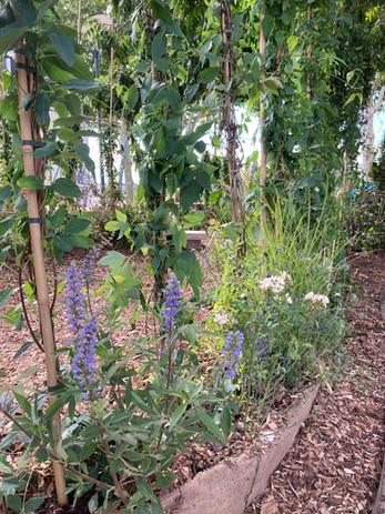Jardins éphémères 2020, Orléans (45)