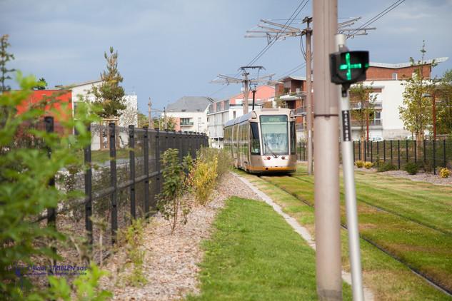 Les voies de tram