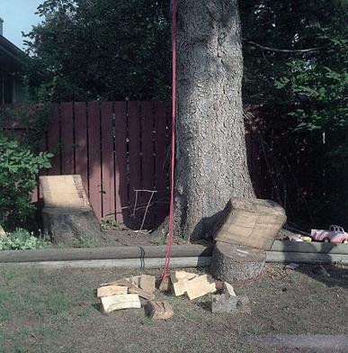 chopped woodweb.jpg