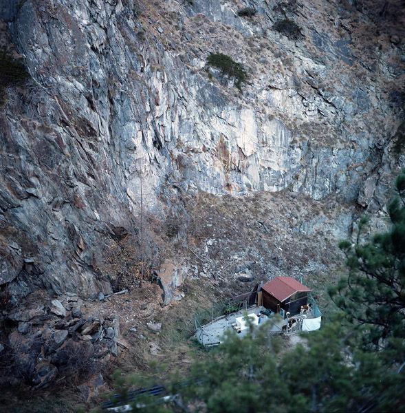 Zermatt dogsweb.jpg