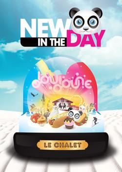 Boule_chalet_B