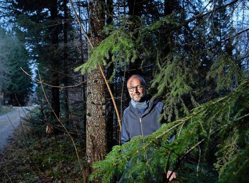 Die Bärenwälder im direkten Vergleich