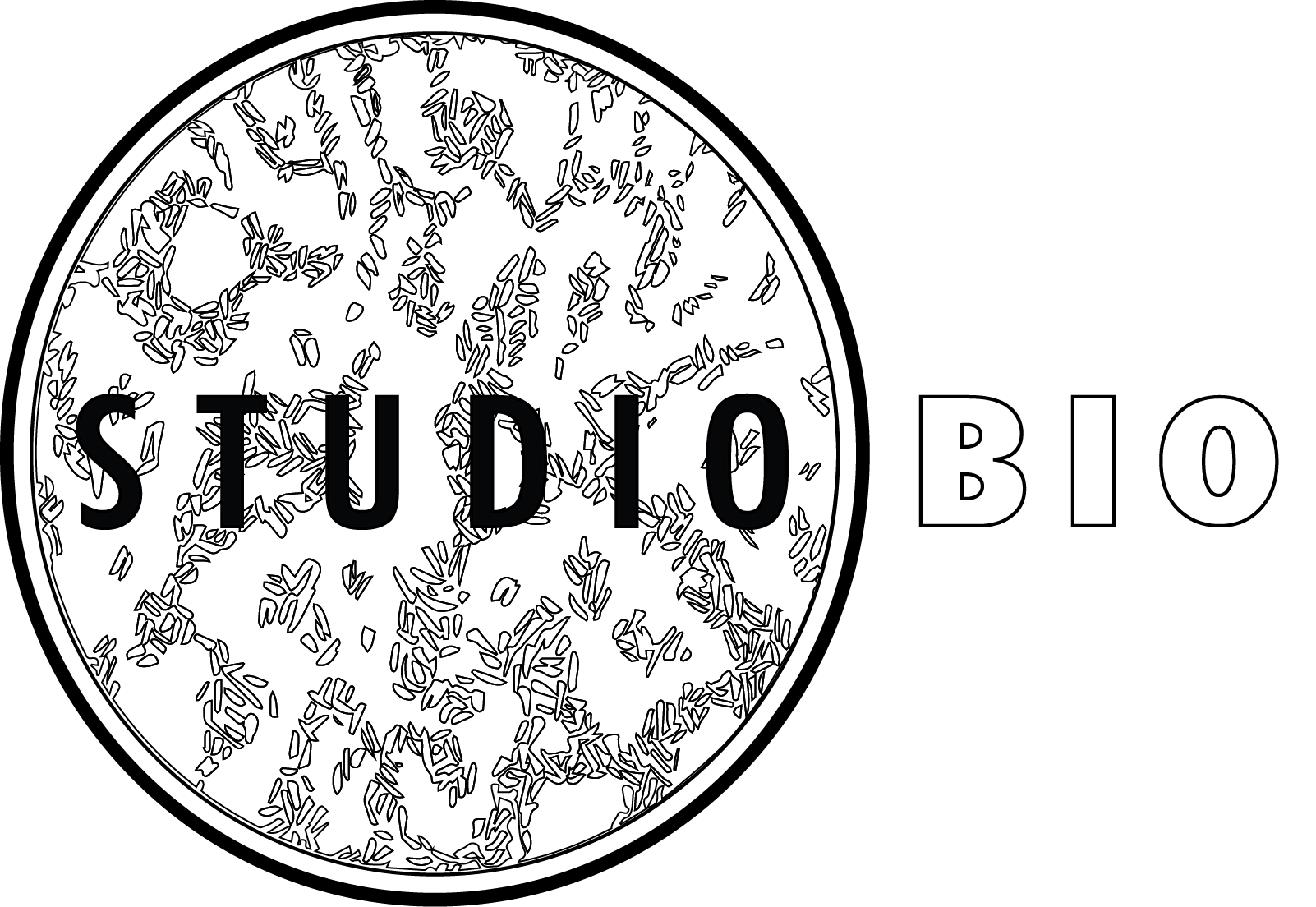 StudioBIO