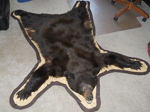 Bear Rug.jpg