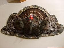 Turkey Flat.jpg