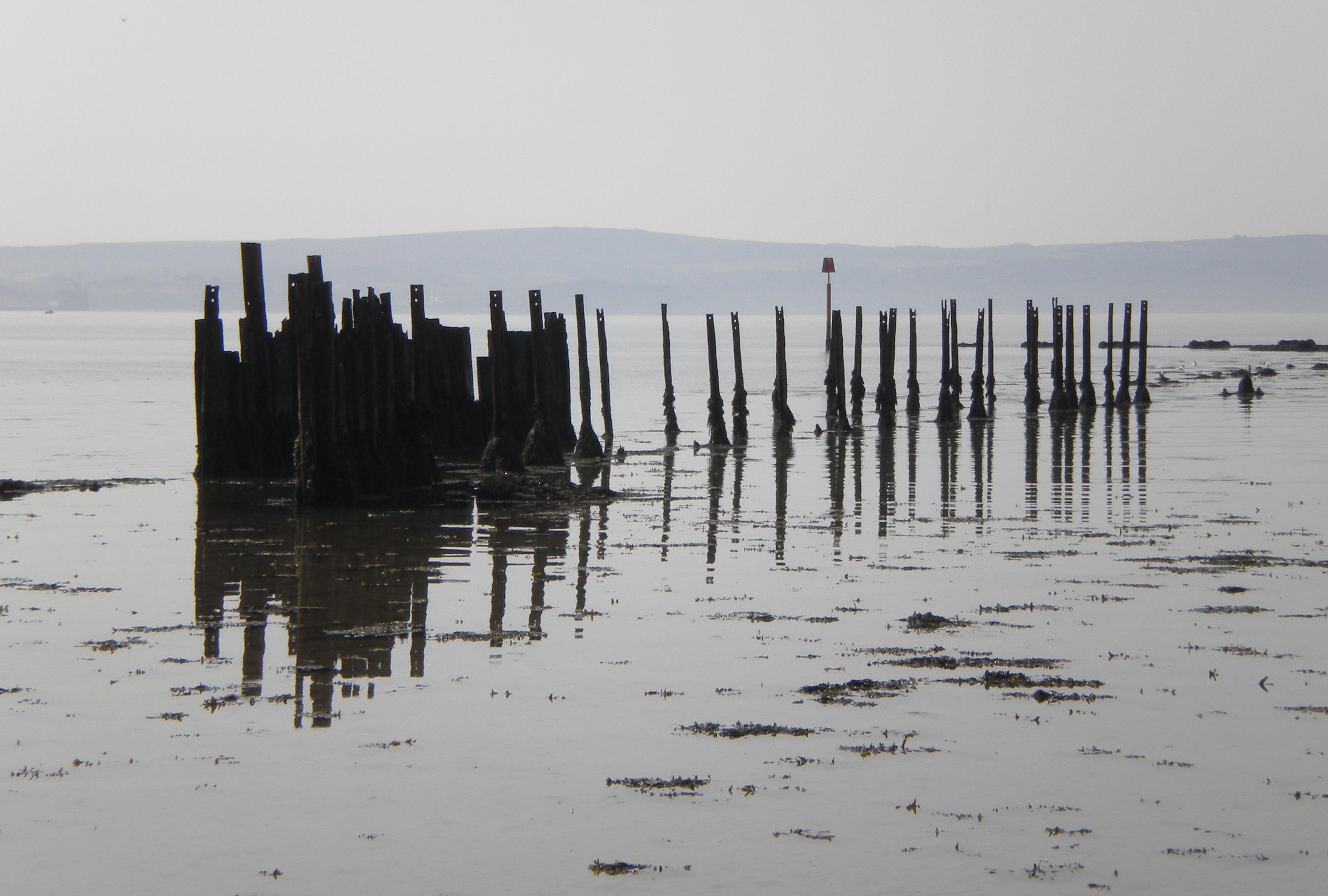 Lymington Salt marshes 2
