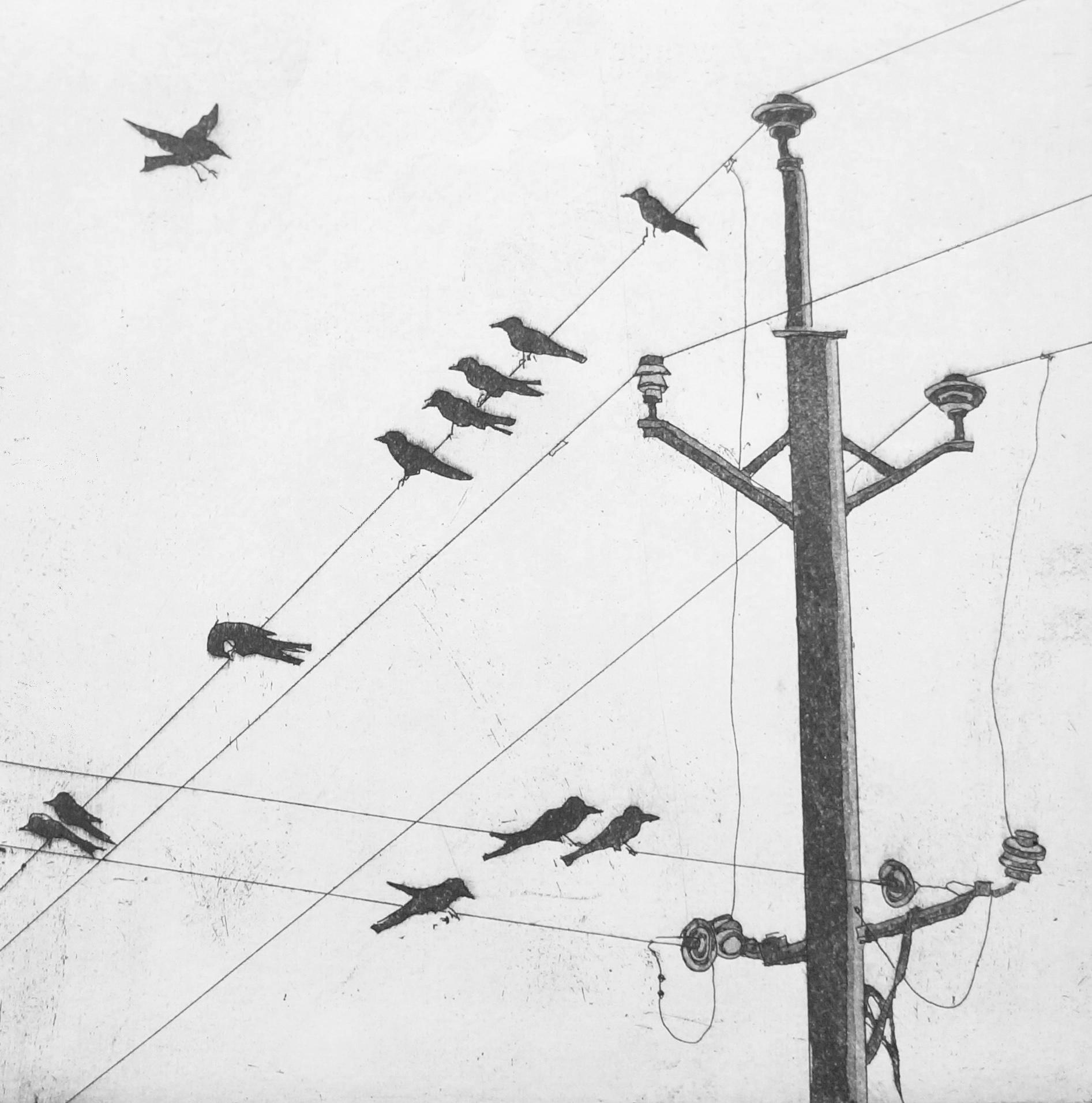 Birds on a Wire  32 x 32 cms