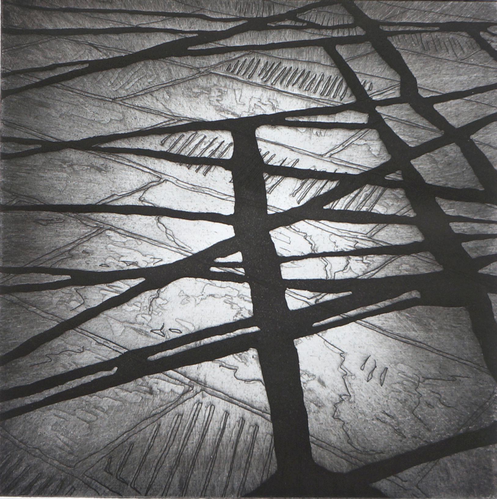 Shadows 1    32 x 32 cms