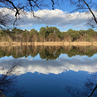Black Pond, Esher