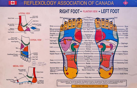 RAC-Foot-chart.jpg