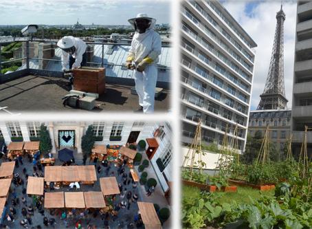 Une Hôtellerie-Restauration plus responsable, un pas vers une meilleure qualité environnementale