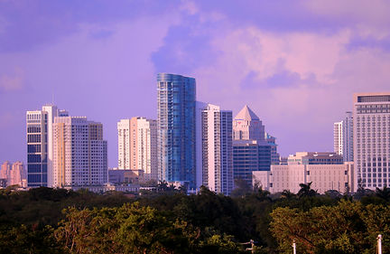 FTL Skyline color adj.jpg