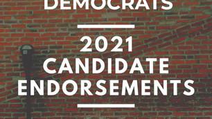 Media Dems Endorse...