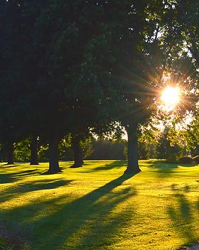 Morning Image at Kingsville Golf - Click to view Membership Information