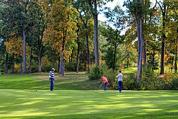 Image of members golfing at Kingsville Golf
