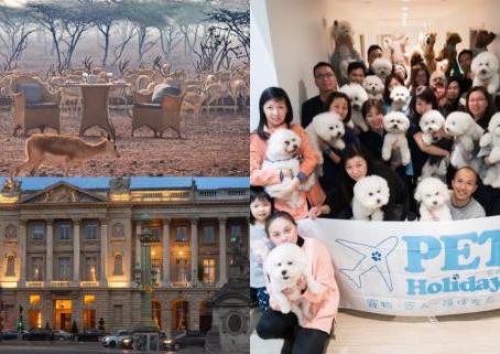 【新浪香港】農曆新年,情人節,想去旅行又唔想plan? 推介3個可私人訂製的旅行團!