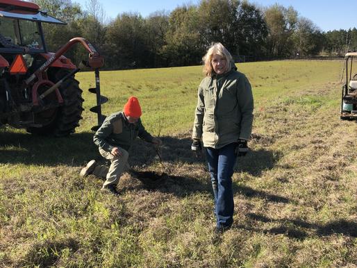 Sheri and Raymond Planting Oaks
