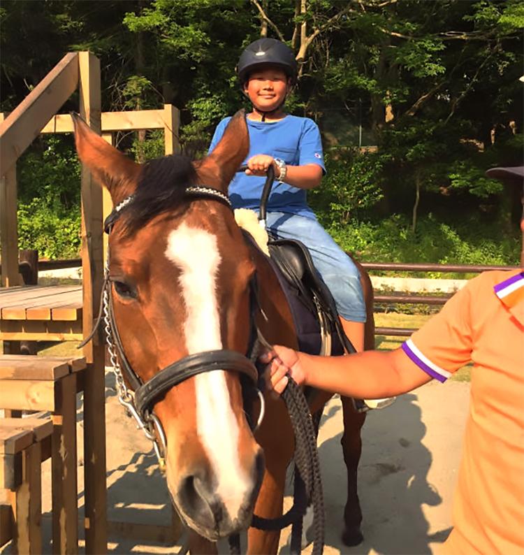 1人乗り乗馬