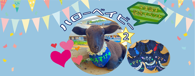 HPバナー 子羊イベント2.png