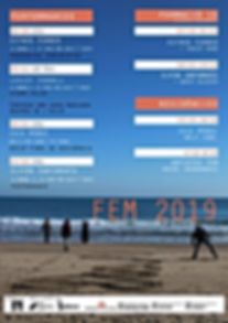 PROGRAMA FEM2019Final.jpg