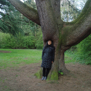 Sueño que un árbol me protege. Ormeau Park 2017