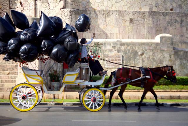 Parábola III: Penal y bandera. Acción recorrido. Acción urbana. Calle 60. Sur-Norte. La Rendija teatro. Mérida Yucatán. Fotos Fausto Méndez