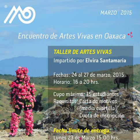 Taller de Arte Acción, MACO, 2015