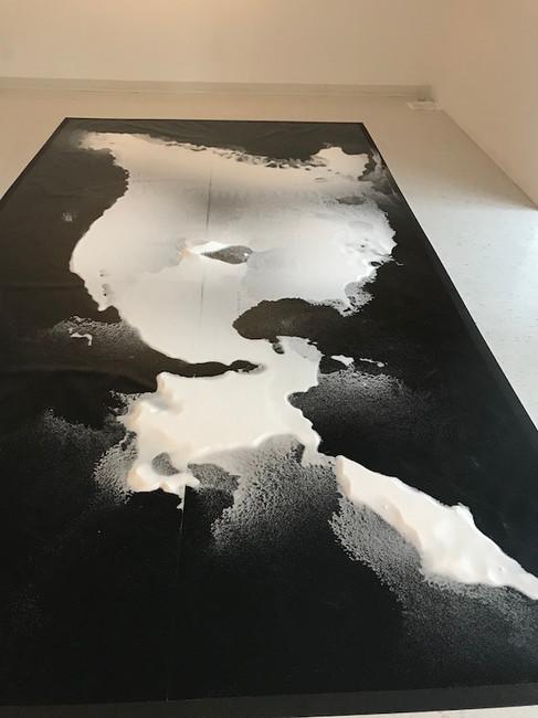 Salt Carthographie. pic Heather Borsma c