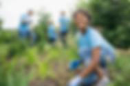 Scène de l'agriculture