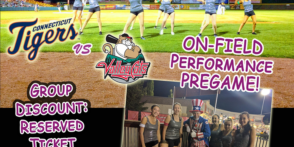 Performance Group @TheValleyCats